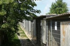kotce-2012 (6)
