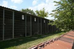 kotce-2012 (7)