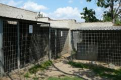 kotce-2012 (8)